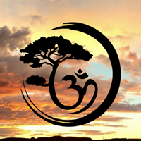 True North Yoga logo