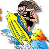 Paradise Wild Wave Rentals logo
