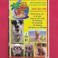 Pets In Paradise Resort logo