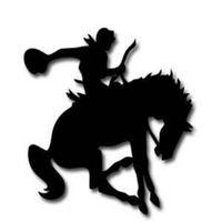 Rawhide PC logo