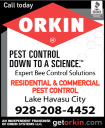 Yellow Pages Ad of Orkin