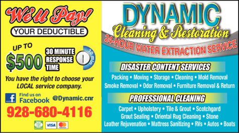 Print Ad of Dynamic Cleaning & Restoration