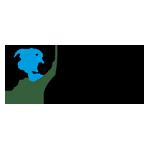 Import Corner logo